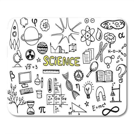 ตกแต่งใบงาน วิทยาศาสตร์ รูปวาด